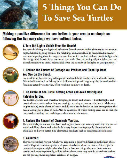 5thingstosaveseaturtles